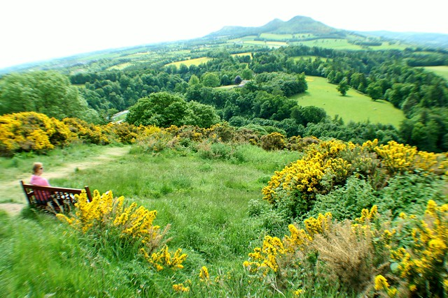 Scott's View, Melrose, Scottish Borders