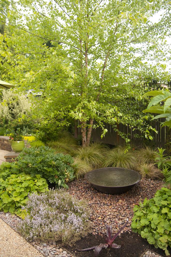 Plant Passion Garden 1