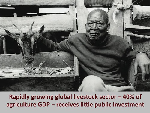 ILRI presentation for ALiCE2013: Rapidly growing global livestock sector