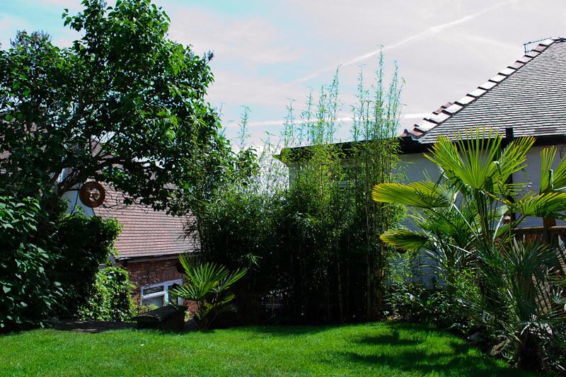 entrance to garden-2-1