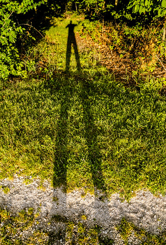 Long Shadow Number Nine
