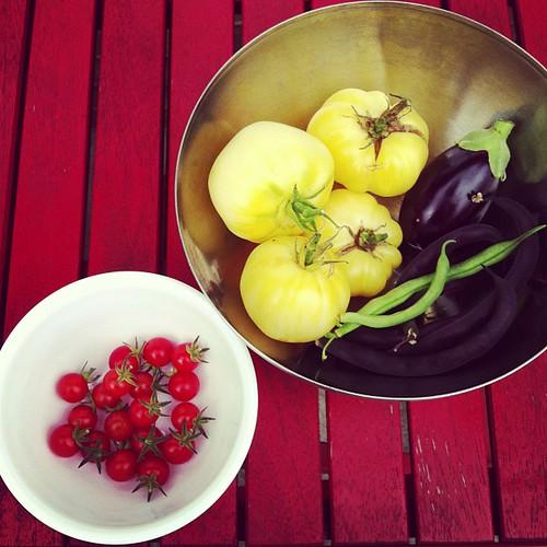 August 31 harvest