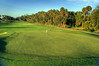 Palm Harbor Golf Club