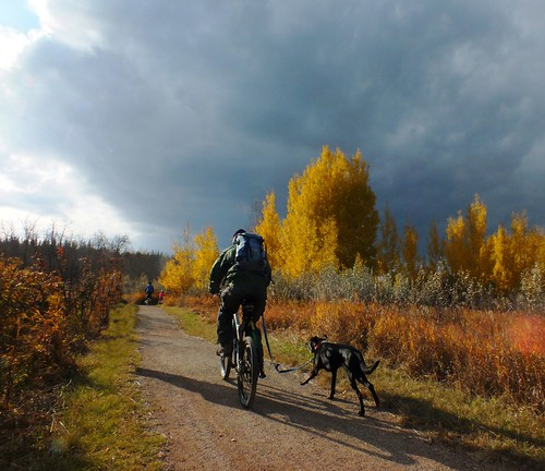 autumn sky canada calgary clouds alberta fishcreek fishcreekpark