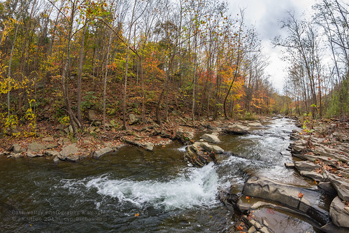 color fall water leaves creek stream maryland run jennings alleganycounty mountsavage canoneos7d rokinon8mmf35fisheye