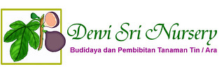 Dewi Sri Nursery