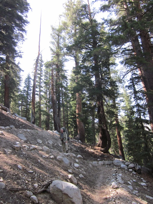 The steep switchbacks on the PCT above Spiller Canyon on the way to Miller Lake