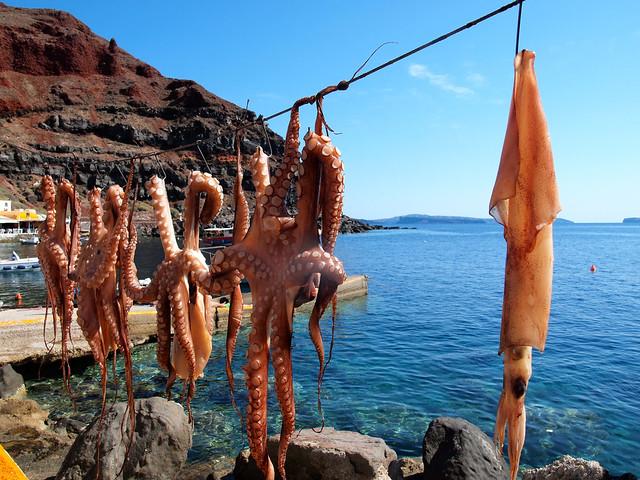 Octopus in Oia, Santorini