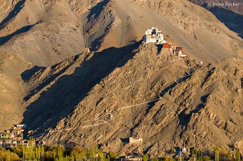 morning sunset india mountain hill himalaya leh ladakh imagesofindia ommanipadmehum northindia jammukashmir tibetanbuddhism littletibet indianimages sankargompa thelastshangrila lastshangrila sankarmonastery irenebecker irenebeckereu themoonland moonlandonearth