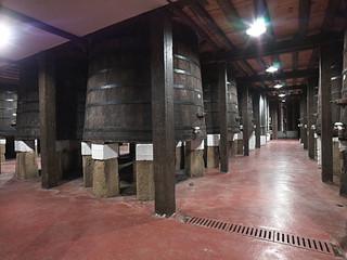 Tinas centenarias de La Rioja Alta.