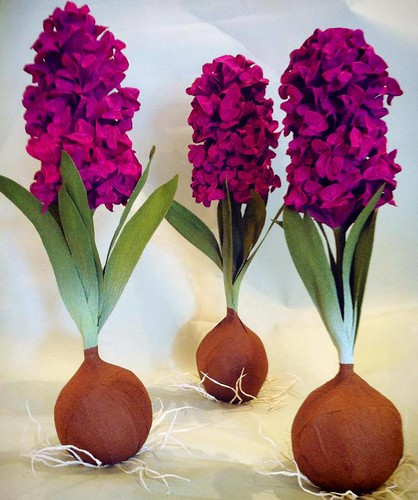 surprise-ball-hyacinths