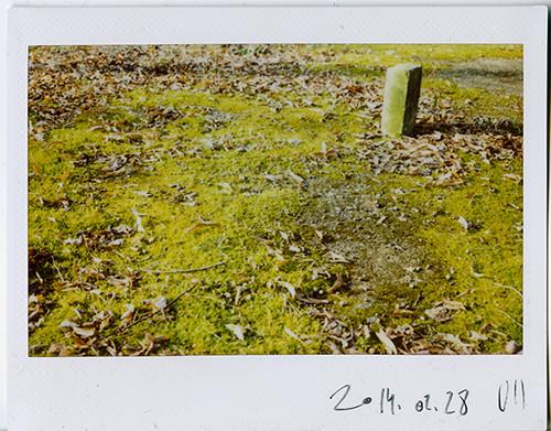 2014.02.28 VII