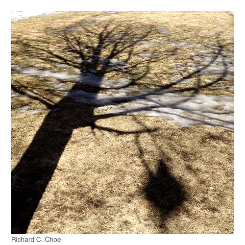 Shadow 4 (2014, 3.11) by rchoephoto