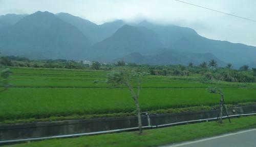 Taiwan-Taitung-Hualien-Route 11 (123)