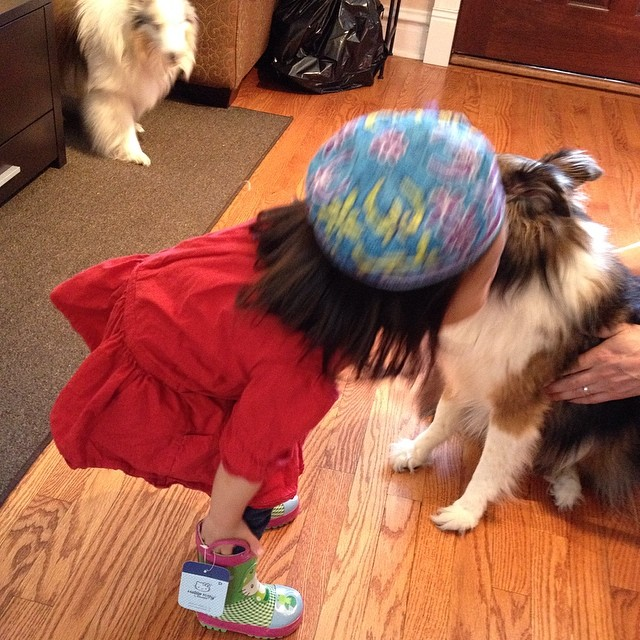 "Blurry ""niece"" & favorite Simon (the wonder pup) at Passover Seder. #100happydays #latergram"
