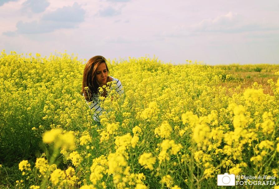 Entre Flores amarillas, primavera