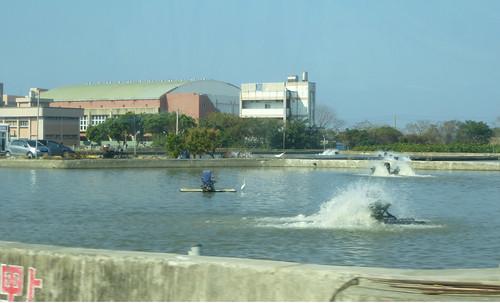 Ta-Kaohsiung-Hengchun-bua (71)
