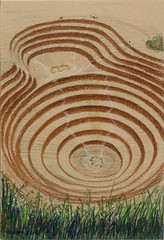 agriculture(0.0), outdoor structure(0.0), soil(0.0), maze(0.0), line(0.0), flooring(0.0), pattern(1.0), field(1.0), grass(1.0), labyrinth(1.0), circle(1.0),
