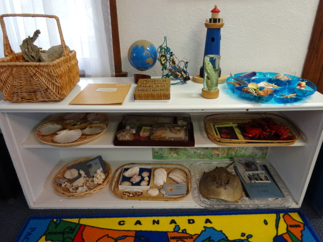 Ocean Designs (Photo from Dundee Montessori)