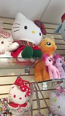 Morning Glory - Cute Stationery Store in Astoria, NY