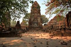 歷閱繁華 ~Ayutthaya 大城,Wat Phra Mahathat~