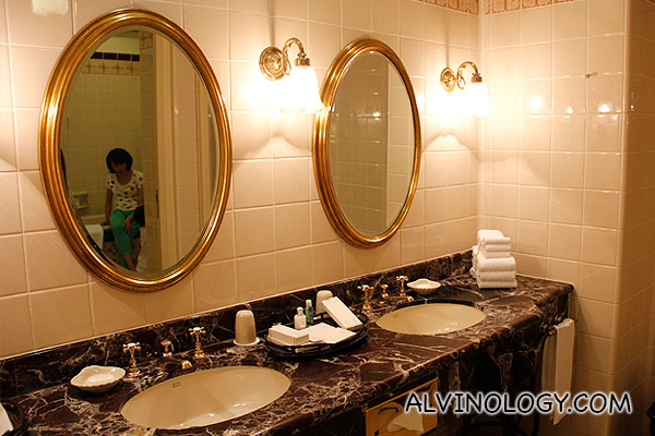 Bathroom wash area and mirrors