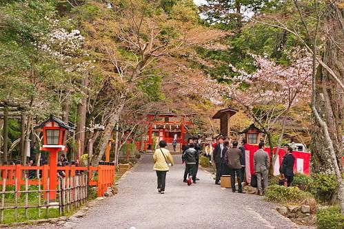 【写真】2013 桜 : 大原野神社/2021-01-15/IMGP0055
