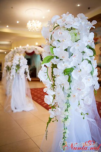 Sala de nunti ARUS > Foto din galeria `Principala`