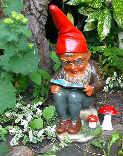 Book reading gnome