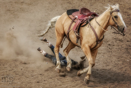 Gooseberry Lake : 4-H Rodeo 2013 : Discount Dismount