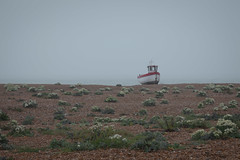 Boat, Dungeness
