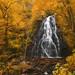 Crabtree Falls - Blue Ridge Parkway, North Carolina by Will Shieh