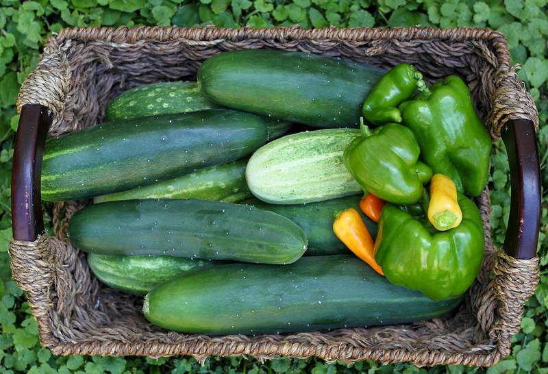 pickles-1.jpg
