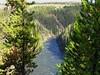 Upper Falls trail (9)
