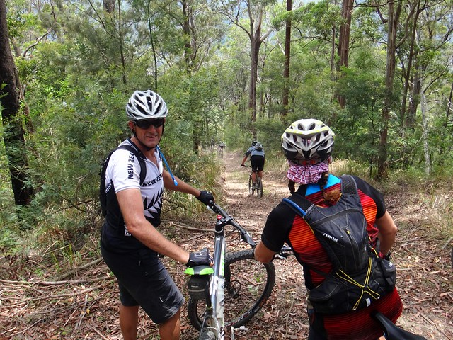 Mt Brisbane Horse Trail Descent
