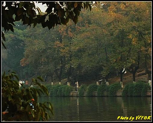 杭州 西湖 (其他景點) - 683 (北山路湖畔 孤山公園)