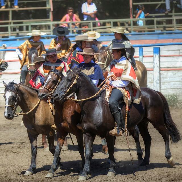 Chilean Rodeo - All Girls Show 7 | Explore Raul Cortijo's ...