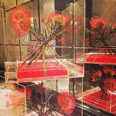#flemingsmayfair #flowerdisplay #boutique #hotel #mayfair #london
