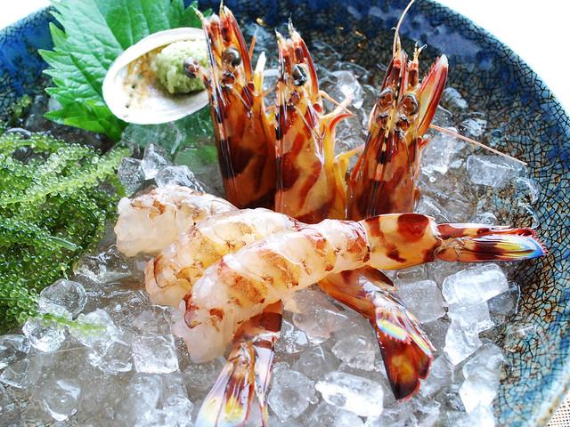 14.Scampi (Marsupenaeus japonicus)_fresh scampi grew up in the Okinawa ocean