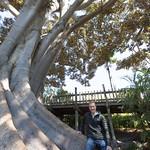 Me and the tree, Balboa Park