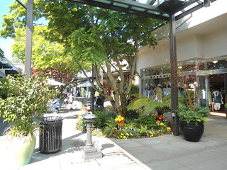 University Village offers shopping with nature near by in this open air shopping center in Seattle, WA