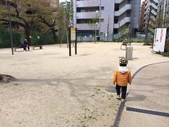 とらちゃんと臨川四季の森(渋谷区広尾)