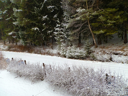 winter snow latvia ogre