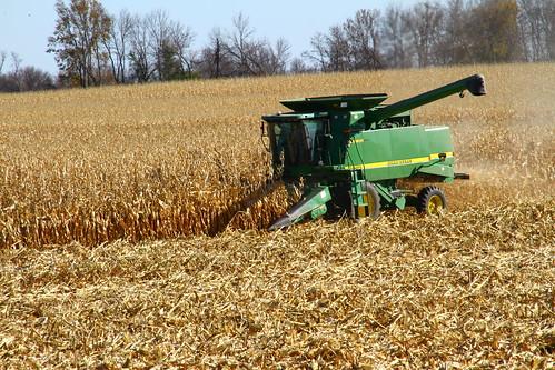 usa minnesota flickr technik uploads 2014 canoneos7d landwirtschaftagriculture sigma18250mmf3563dcmacroos
