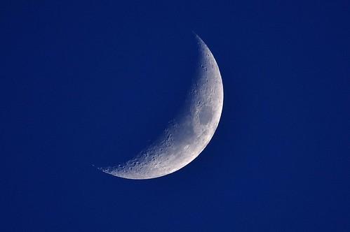 moon oregon portland reflex mm 500 f8