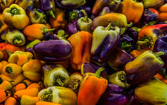 Colourful-capsicum_DSC5653