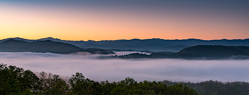 trees fog sunrise dawn us unitedstates tennessee tallassee anpwgsmnptennessee