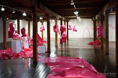 20160621-24-Plastic Histories  by Cigdem Aydemir at Long Gallery
