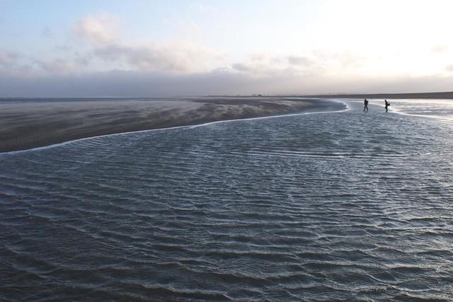 DSC_6511 Rye Harbour beach