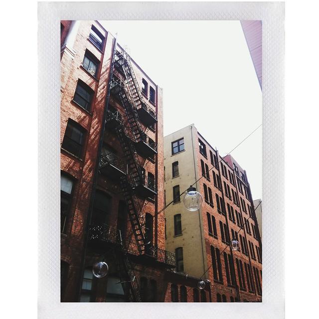 photo (32)